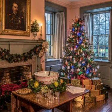 Home for the Holidays: A Celebration of Family Photo