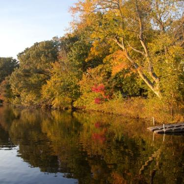 Evening Kayak Paddle Photo
