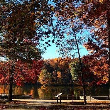 Fall Trail Day Photo