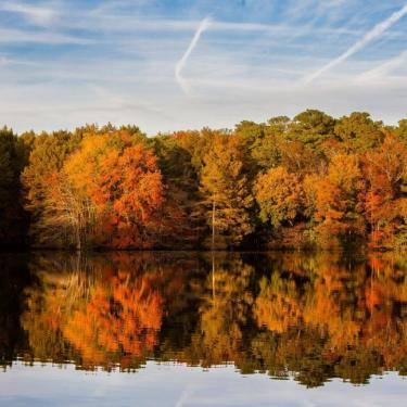 Fall Foliage Pontoon Tour Photo