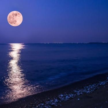 Full Moon Hike Photo