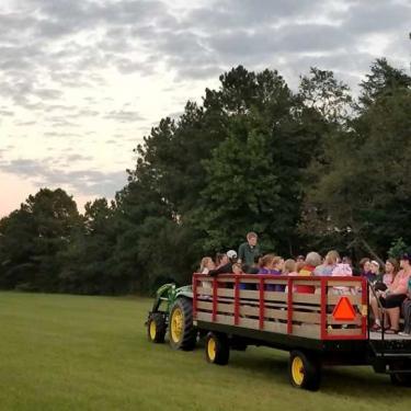 Public Wagon Ride Photo