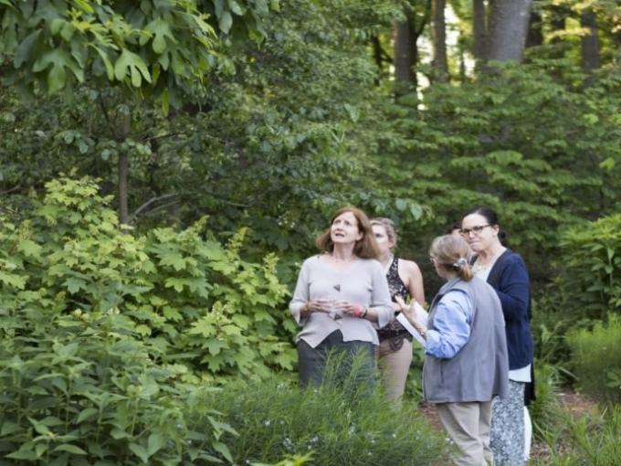 Garden Enthusiast Tour Photo