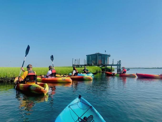 Kayak Eco-Tour: Paddling Station Cove Photo