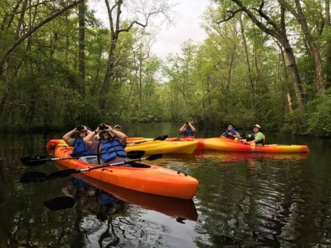 Broad Creek Kayak Excursion Photo