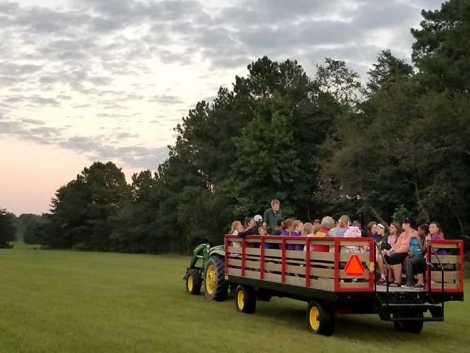 Fall Wagon Rides Photo