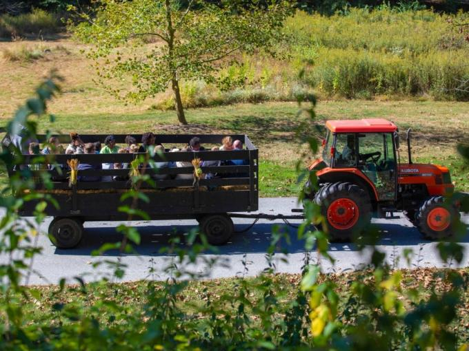 Truck & Tractor Day Photo