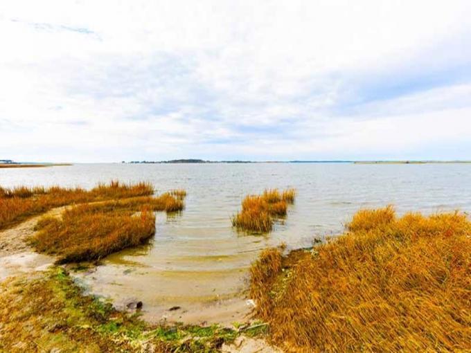 Hike Burton Island Nature Preserve Photo