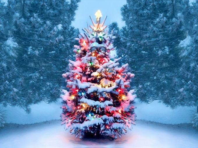 We Need a Little Christmas! Photo